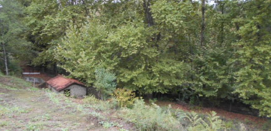 חווה עם נהר ומבנים לשיפוץ, 5.4 האקטאר,  45 דקות מפורטו ב € 220,000